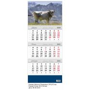 Календарь 2021, настенный, квартальный, фото, КЛАССИК