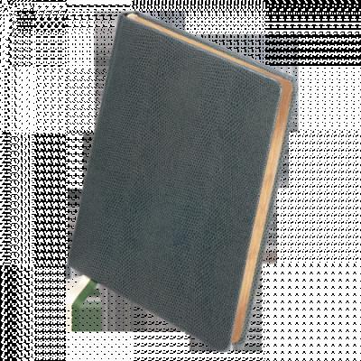 Ежедневник датированный, GALLAXY, синий, А5, 2020