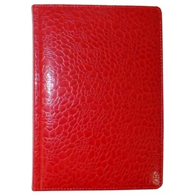 Ежедневник недатированный, Brisk, TORTUGA 151, красный+серебро, А6