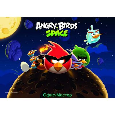 """Килимок для дитячої творчості """"Angry Birds"""""""