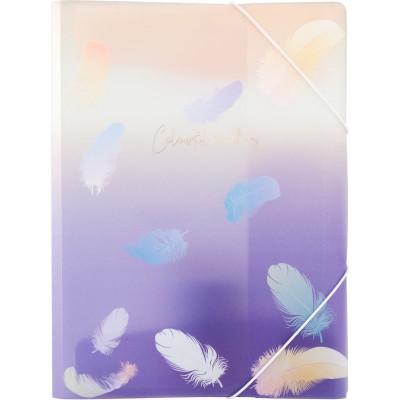 Папка на резинке А4+, Colourful Feather 02